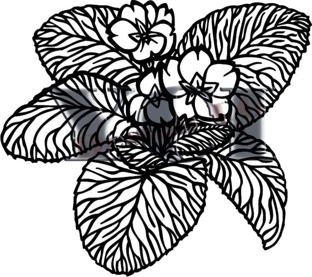 Цветок (шаблон)