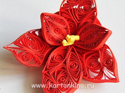 Квиллинг новогодние поделки: цветы пуансетии